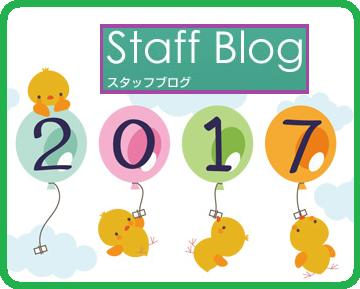 スタッフブログ2017年
